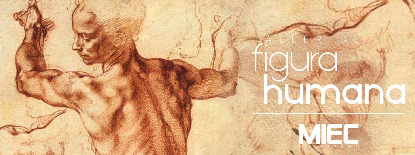taller de figura humana, figura humana, cuerpo humano dibujo, cursos de pintura, figura humana dibujo, como dibujar una persona, curso de dibujo, figura del cuerpo humano, cursos de arte, figuras humanas para dibujar, cuerpo humano para dibujar, figura humana en el arte, clases de arte